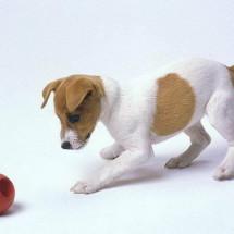 Игра для детей — «Собака»