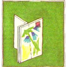 Детский фокус — Устойчивая открытка